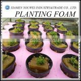 Soilless Culture Planting Foam For Green Agriculture
