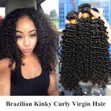 Beauty And Personal Care Brazilian Curly Human Soft And Smooth  Hair 10inch - 20inch Russian  Deep Wave