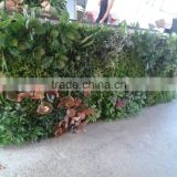 Yafei high quality artificial grass wall/artificial green wall/artificial plant decoration
