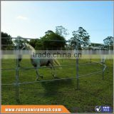 Australia hot dipped galvanized metal horse fence In Farm (Factory Trade Assurance)