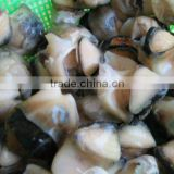 Frozen Boiled Top Shell Meat