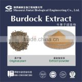 factory supply arctiin 10% burdock root extract