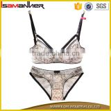 Hot designer ladies women sex lace transparent sexy panty bra sets                                                                                                         Supplier's Choice
