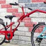 Taiwan Top - FOLLOWER - 20 inch 6 speed single wheel extension bike