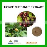 horse chestnut extract Aescins 20% Manufacturer supply