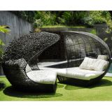 Customized Contemporary Outdoor Furniture Luxury Modern Customized