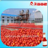 High quality whole set tomato paste processing equipments include washing,crushing,sterilizing,filling machine