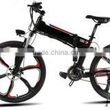 Rounded Modern Design Bike Folding E Mini Electric Bicycle