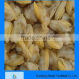 high quality frozen short necked clam seafood clam meat