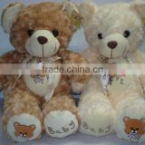 HI EN71 Cute Teddy Couple Bear for Gifts