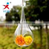 Hanging Clear Glass Hand Crafts Terrarium
