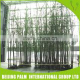 Professional Design High Quality Artificial Evergreen Plant And Tree