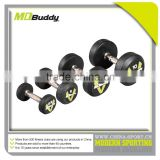 Commercial stainless steel dumbbell with cheap price