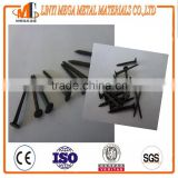 Blue shoe tack nails from china supplier