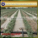 Agriculture PE irrigation drip tape price