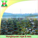 Cheap HDPE Agricultural Bird Netting For Grapes Apple Trees Anti Bird Protecting Netting