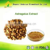 Astragalus extract 1%-20% Astragaloside with best price                                                                         Quality Choice