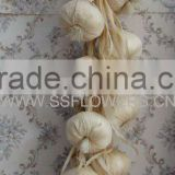 "Christmas Decration Artificial Fruits 26"" Artificial Garlic String"