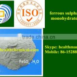 ferrous sulfate monohydrate 30% gray powder used for feed additive