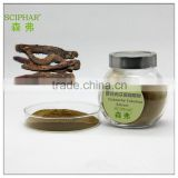 High Quality of Cistanche Tubulosa Extract ;Echinacoside30.0%