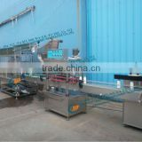 hot fill bottling machine,automatic filling capping machine
