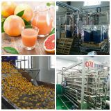 grapefruit juice processing line