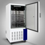 Factory supply mold incubator WS-250MJ,Plant cell seed mold culture, reliable quality