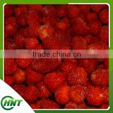 frozen style and bulk packing IQF strawberry