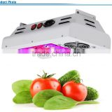 Chinese Factory Wholesale LED Grow Light Full Spectrum Programmable 1000w induction grow lighting