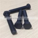 Black grade 8 hex bolts