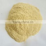 Air Dried Indian Garlic Powder Premium Quality