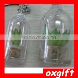 Oxgift Plant Pet and Mini Plant key chain or Cell phone pendant