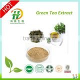 natural jasmine green tea extract(40% plyphenols)