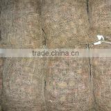Chinese Shandong Taian Chestnut easy peeled
