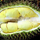 Fruit Durian Extract powder 10:1 20:1