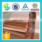 beryllium copper strip/foil/coil/tape