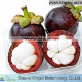 The lowest price for 100% pure natural vemma mangosteen