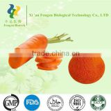Active vitamin A Carrot Powder,Carrot Powder Manufacturers,Carrot Powder Price