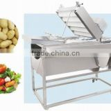 double brush type washing machine stainless steel used for ginger garlic strawberries potato carrots jujube sweet potato