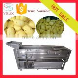 Automatic dry Ginger peeling machine with low price
