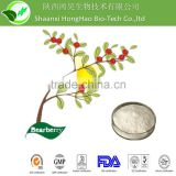 Skin Whitening Cosmetic Grade 100% pure alpha arbutin powder/alpha arbutin/bearberry powder