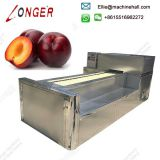 Automatic Plum Fruit Pitting Machine With High Pitting Rate