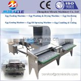 Machine for grading chicken eggs, 100% sus304 egg weight sorting, produce egg grader machines