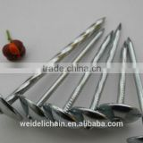 Shandong manufacturer Zinc coated galvanized roofing nails                                                                         Quality Choice