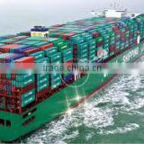 Professional international sea freight forwarder from Vietnam to China/EU/USA/ Korea/Japan