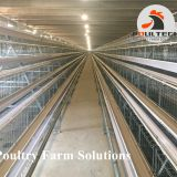 A type layer chicken cage equipment for poultry farm
