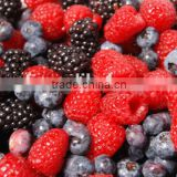 Frozen IQF Mixed Berries with BRC