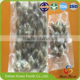 Health Food Frozen vacuum short necked clam with shell IQF