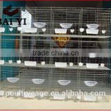 High Quality New Design Layer Pigeon Cage For Sale