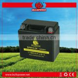 frog style battery for e-bike 36v 5ah battery packs battery for electric bicycle BPM12-5